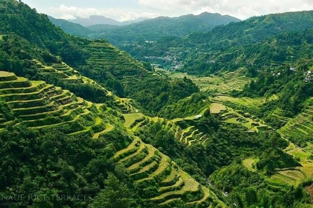 Banaue Rice Terraces tour by The Luxe Guide